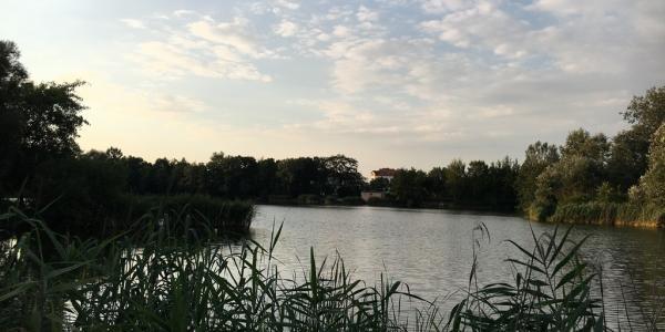 Park przy Góreckiej